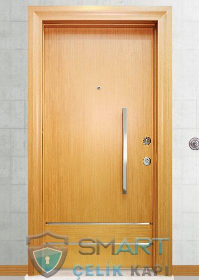 Blue Klasik Çelik Kapı alarmlı çelik kapı modelleri parmak izi okuyuculu çelik kapı