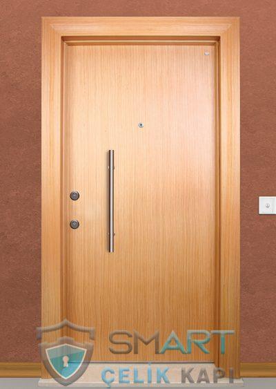 Strong Klasik Çelik Kapı alarmlı çelik kapı modelleri parmak izi okuyuculu çelik kapı