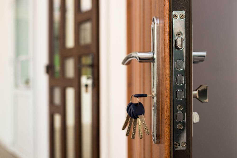 smart kapı